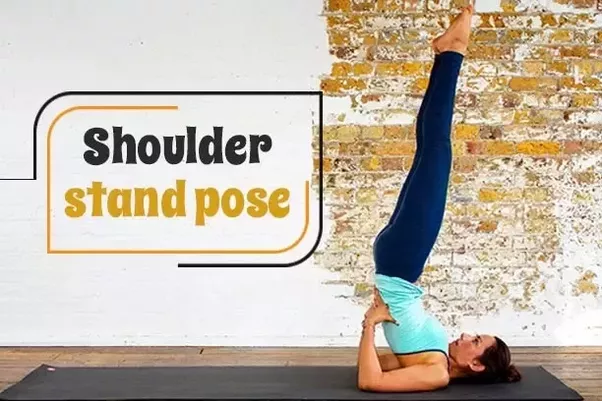 Shoulder Stand Pose Besides Being A Recommended Yoga Asana For Weight Loss This Can Also Help In Maintaining Your Thyroid Gland Which Affects Body