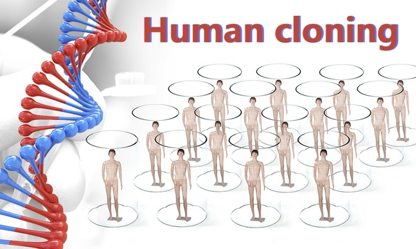 cloning on humans Cloning in biology, the activity of cloning creates a copy of some biological entity such as a gene, a cell, or perhaps an entire organism this article discusses the biological, historical, and moral aspects of cloning mammals the main area of concentration is the moral dimensions of reproductive cloning, specifically the use of cloning in order to procreate.