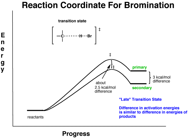 Why Is Bromination More Selective Than Chlorination Quora
