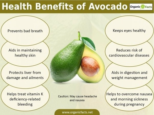 What Are The Benefits Of Eating Avocado Quora
