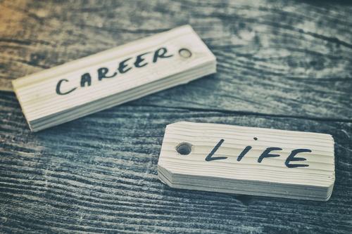 essay on choosing the right career