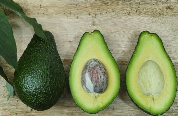 What Does An Avocado Taste Like Quora