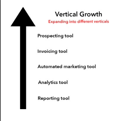 in it industry the business is divided into different industry for providing solutions and consultancy and they are called verticals