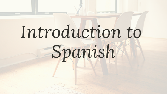 What are the best programs to learn the Spanish language