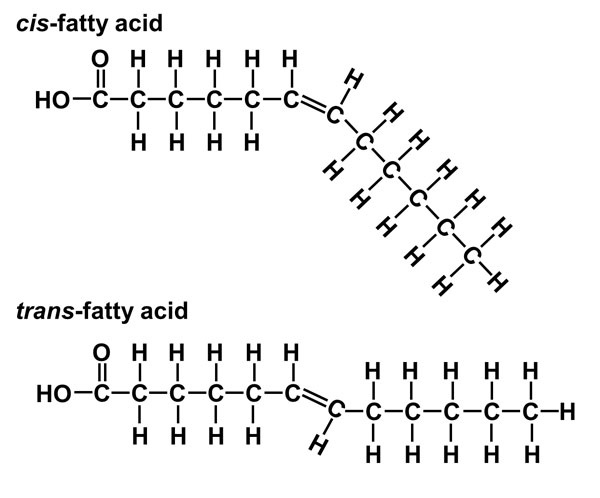 why do cis-unsaturated fatty acids have low melting points than their trans counterparts