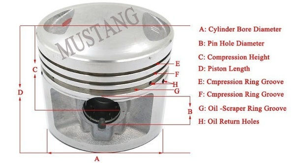 assembly rings piston and of types pistons