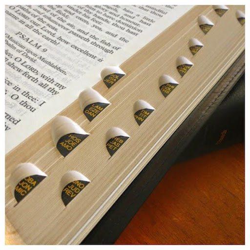 thumb indexed bible