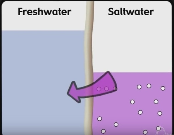 How is sea water converted into drinking water? - Quora