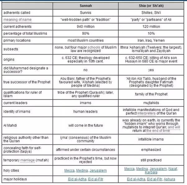 Reason for sunnie and shia divide essay