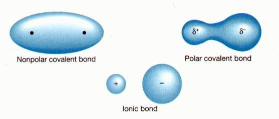 How To Determine If A Bond Will Be Polar Covalent Non Polar