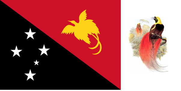 Why is there a bird on the papuan flag quora flag of papua new guinea with the raggiana bird of paradise sciox Choice Image