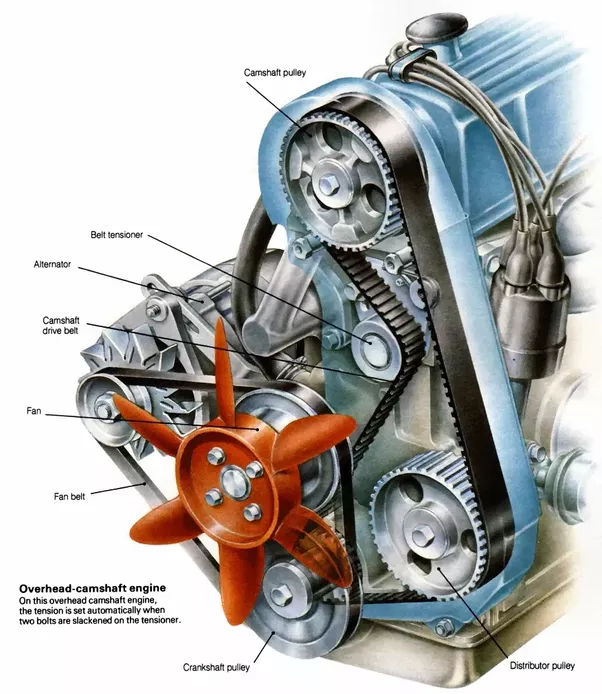 What S The Difference Between A Drive Belt And A Timing