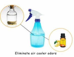 How to prevent the air cooler from stinking - Quora