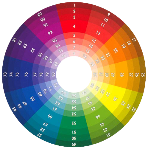 The Composition Of Color Wheel Has Been Made Out Twelve Basic Shades Three Auxiliary And Six Tertiary Colors In These Families Are