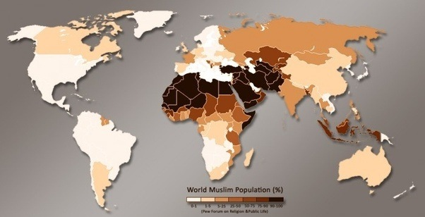 Why are almost all muslims dark or brown skinned quora maybe because 5304 of them are born in africa and an other 3216 in asia the middle east mostly then almost all of them are color skinned gumiabroncs Gallery