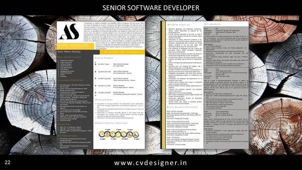 Best resume writing company india