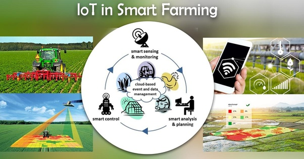 Do you agree with the statement 'IoT based smart farming