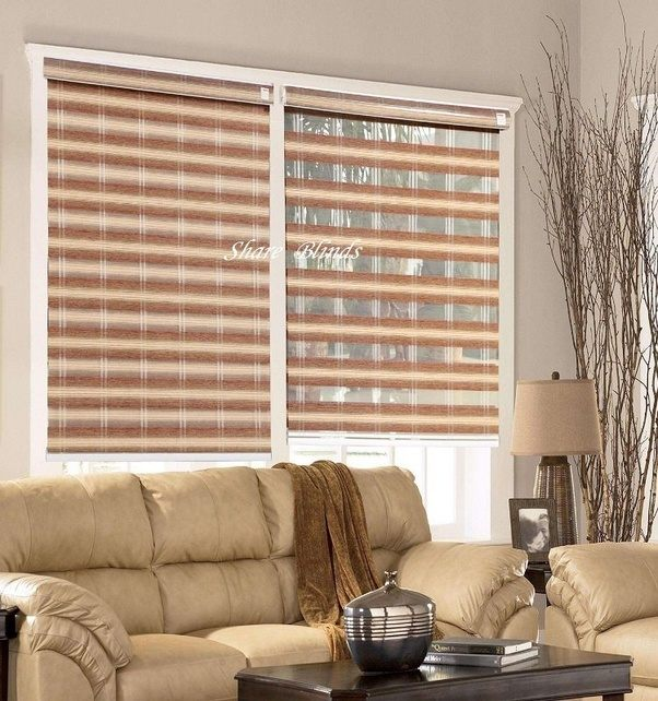What Are The Different Types Of Window Blinds?