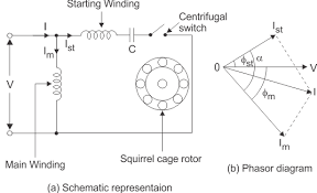 How does a single phase induction motor work quora see single phase induction motors swarovskicordoba Gallery