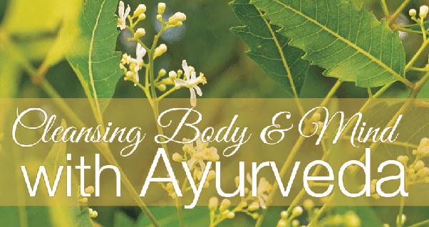 What are the benefits of ayurvedic medicine? - Quora