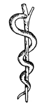 The Other Is Of Two Snaked Intertwined On A Single Staff Called Caduceus It Often Mistakenly Used As Symbol Medicine Instead Rod
