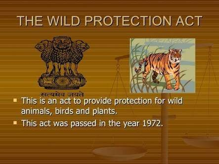 wildlife conservation efforts in india icse project pdf download
