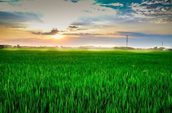 What are the components of a smart agriculture system? And how are