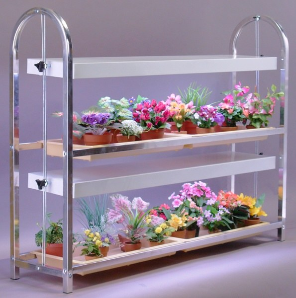 How to grow vegetables indoors with grow lights  Quora