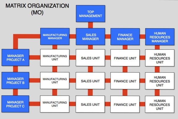matrix organizational structure