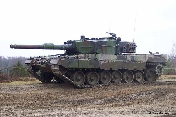 2a4no Polish Leopard