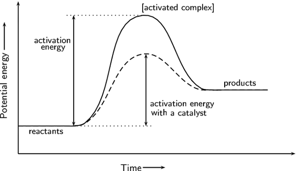 enzyme reaction rates under different conditions Start studying chapter 7 - enzyme kinetics practice the saturating conditions of an enzyme reaction: the study of enzymatic reaction rates in which the rate.