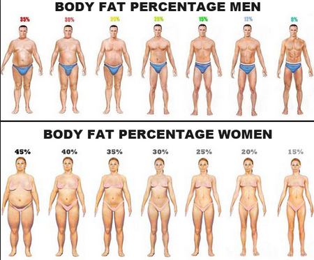 Best 5 week weight loss program photo 4
