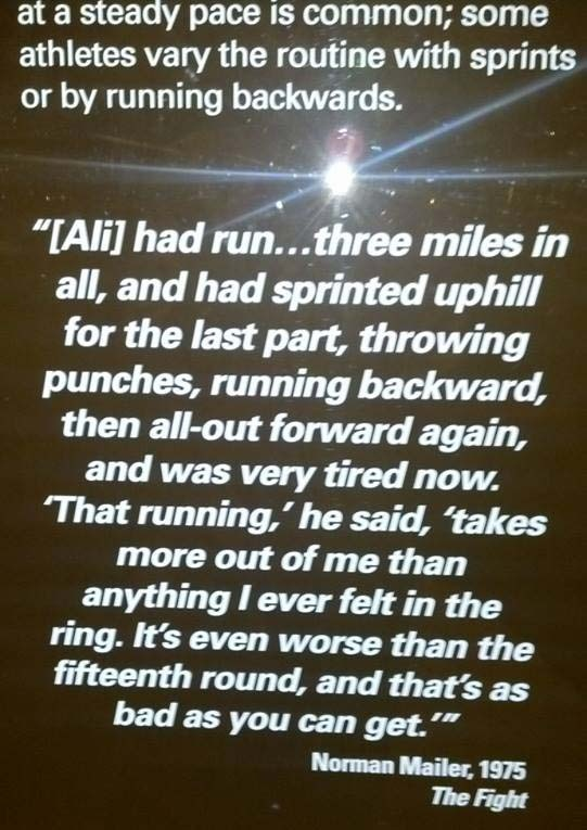 How Many Miles From >> How Many Miles Should A Boxer Run Every Day Quora