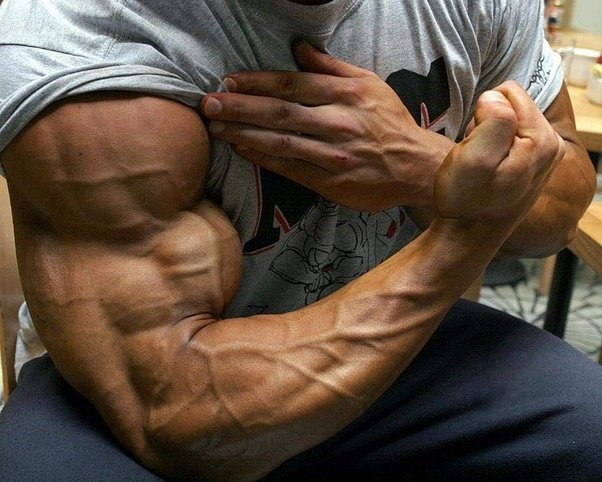 How to target the outer muscle between the bicep and tricep quora answer wiki altavistaventures Choice Image