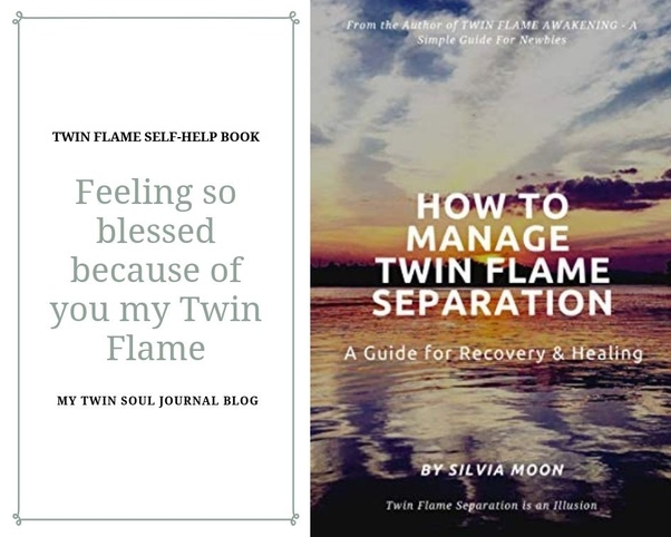 Twin Flame Purpose