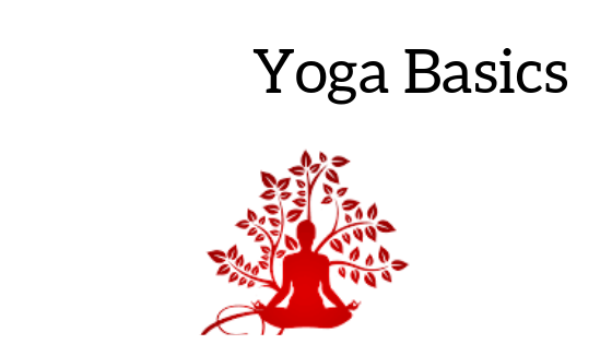 Which Is The Best Online Free Paid Course To Learn Yoga Quora