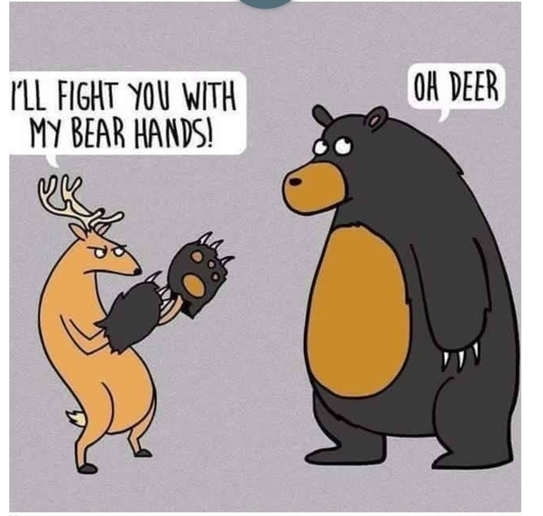 Can you do funny animal puns? - Quora
