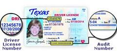 Drivers License Audit Number