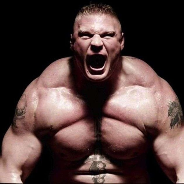 How much has Brock Lesnar bench pressed currently or ...