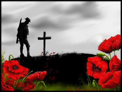 What is the meaning of the red poppy on suits in the uk quora in flanders fields the poppies blow between the crosses row on row that mark our place and in the sky the larks still bravely singing fly mightylinksfo