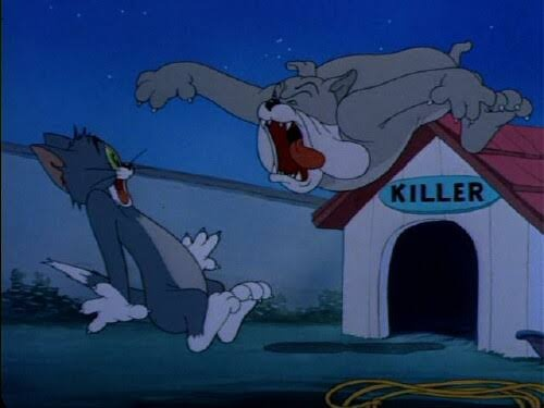 What Is The Name Of The Dog In Tom And Jerry Quora