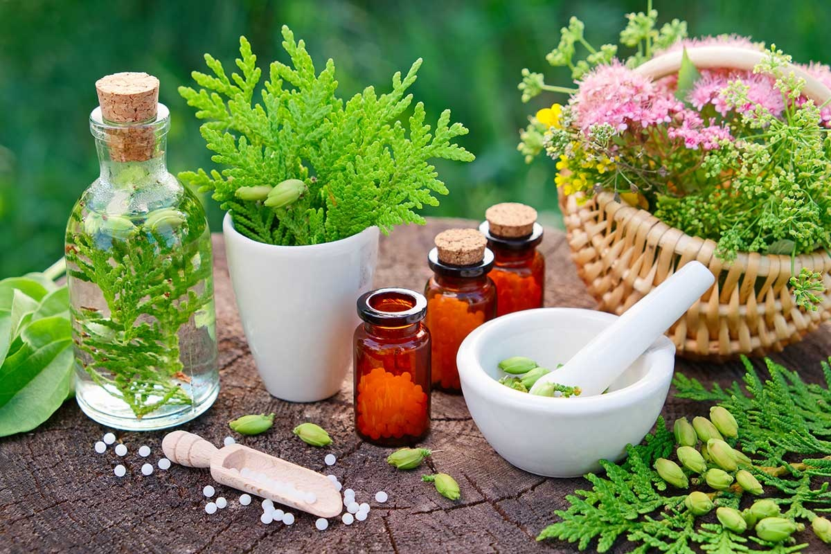 Who is the best naturopathy doctor in Delhi? - Quora