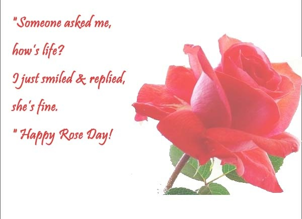 What Are The Best Quotes On Rose Day?   Quora