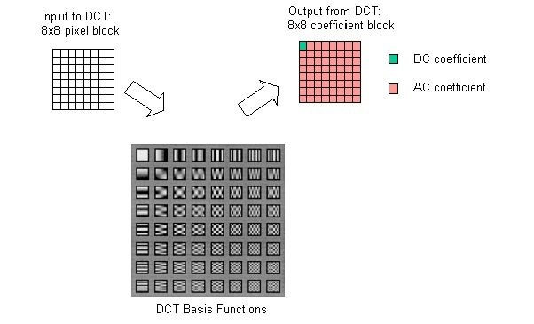 Dct transform pdf into jpg