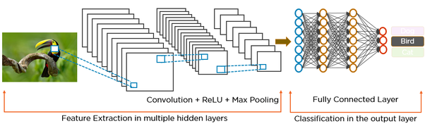 What is the difference between CNN and RNN? - Quora