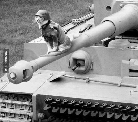 German 88 Mm Gun – Jerusalem House