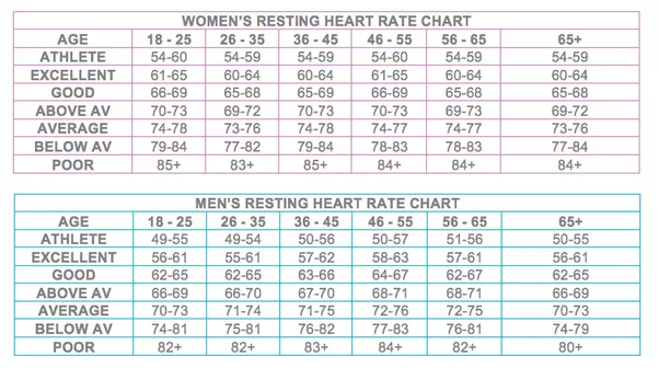 What Is Ideal Heart Rate Bpm Of A Normal Person Quora