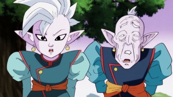 When the Supreme Kai is old, does that make him the new Elder Kai? - Quora