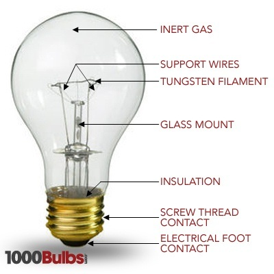 What Car Uses  Bulbs