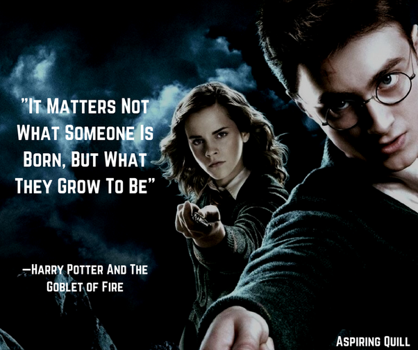 Favourite Harry Potter Quotes: What Are Your Favorite Funny Harry Potter Quotes?
